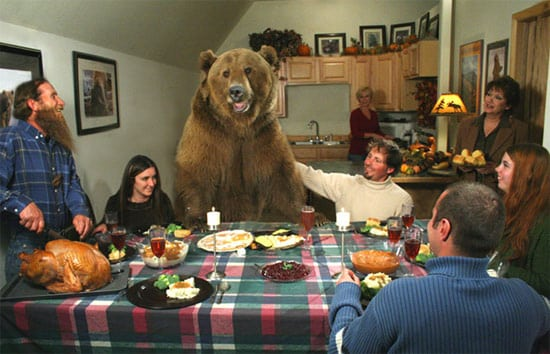 bear-at-thanksgiving-day