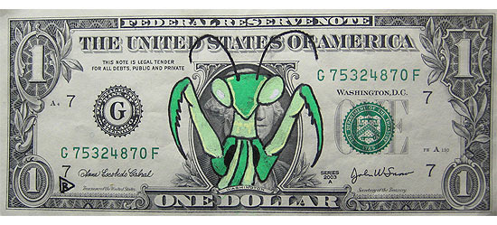 insect-dollar