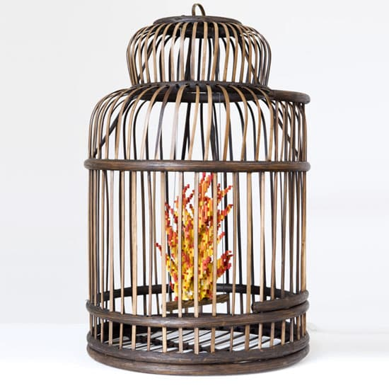pixalate-fire-in-cage