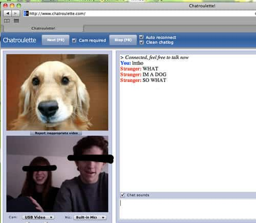 Chat Roulette Screen Shots and Dog