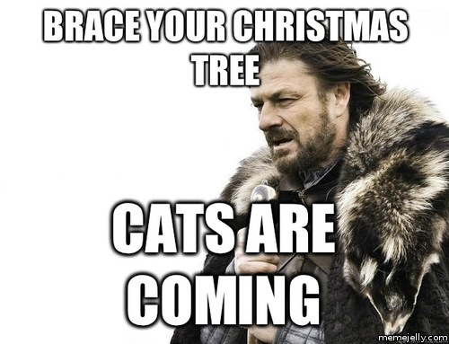 the cats are coming