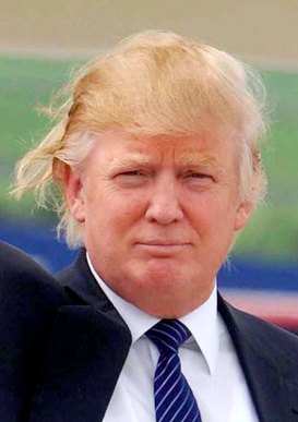 The Donald Trump Hair Disaster
