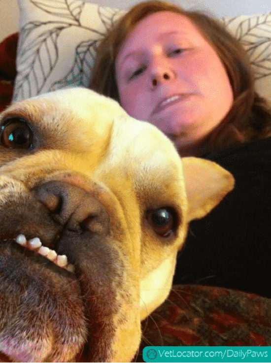Funniest Selfies