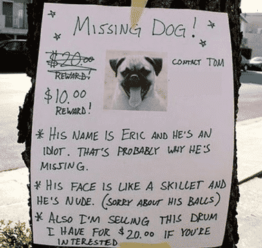 Worst Missing Pets Signs