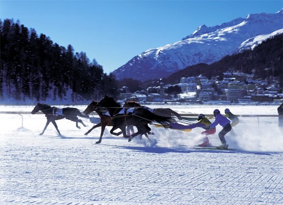 Winter Olympic Sports skijoring