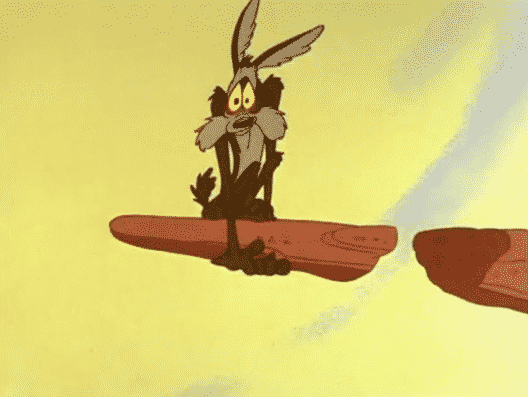 Wile E. Coyote – Roadrunner Cartoons