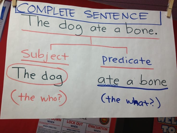 Writing complete sentence